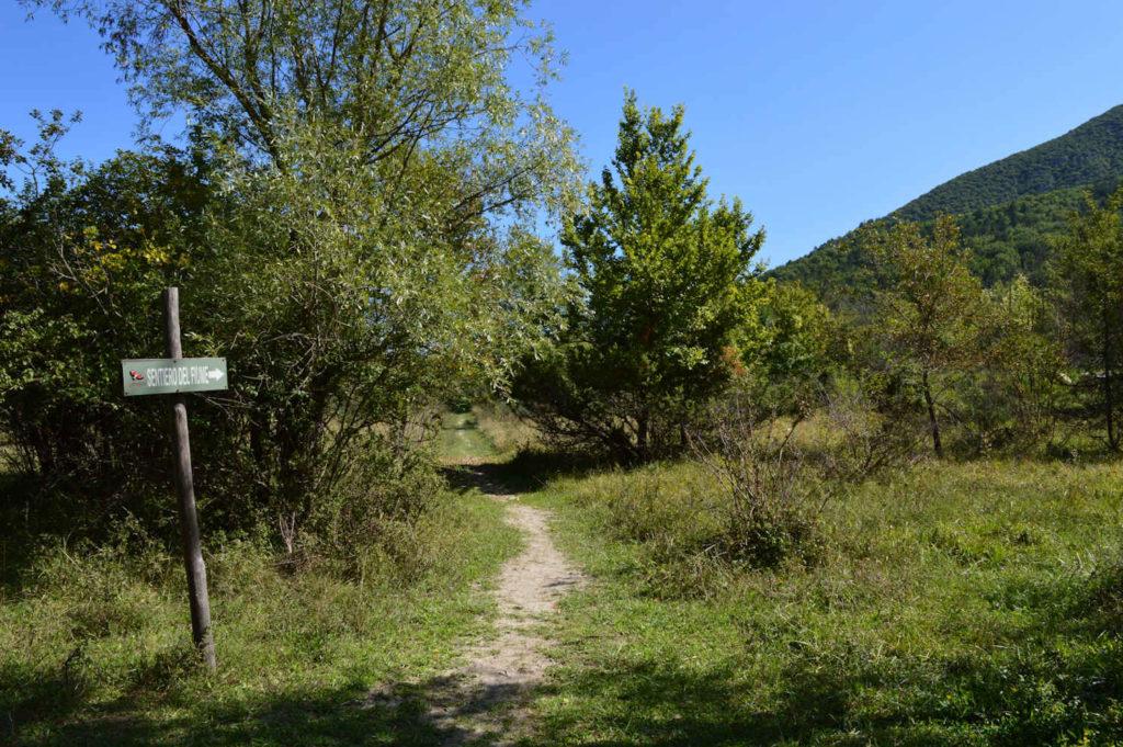 trekking-natura