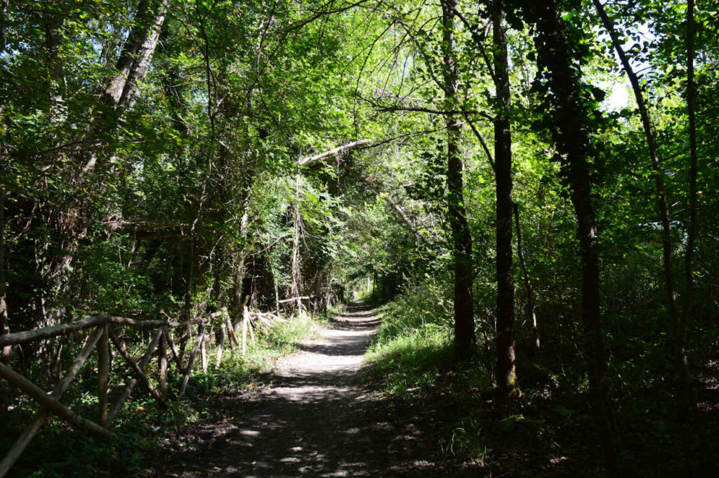 natura-percorso-trekking-montagna