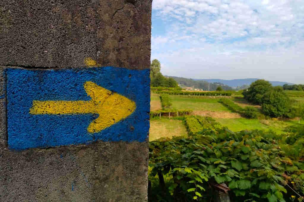 Esplorazioni on the road: Il Cammino di Santiago